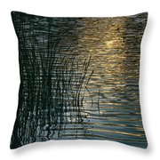 Sunlight Reflects On Rippled Water Throw Pillow