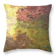 Sunlit Bricks Abstract Throw Pillow