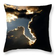Sunlit Brilliance Throw Pillow