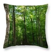 Sunlit Forest Throw Pillow