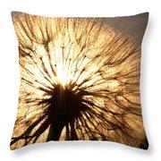 Sunlit Goatsbeard Seed Pod In Scenic Saskatchewan Throw Pillow
