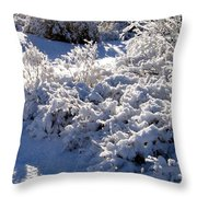 Sunlit Snowy Sanctuary Throw Pillow