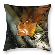 Sunning In The Stream Throw Pillow