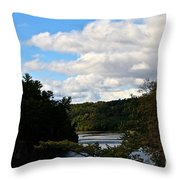 Sunny Around The Bend Throw Pillow