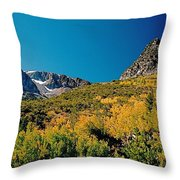 Sunny At The Top Throw Pillow