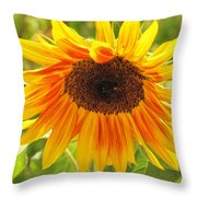 Sunny Bright Sunflower Throw Pillow