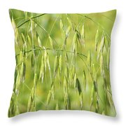 Sunny Day At The Oat Field Throw Pillow