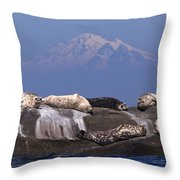 Sunny Days Are Here Again Throw Pillow