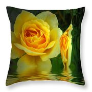 Sunny Delight And Vase 2 Throw Pillow