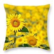 Sunny Disposition Throw Pillow