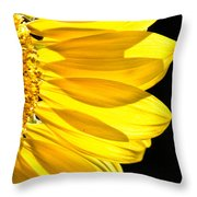 Sunny Glow Throw Pillow