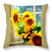 Sunny In Md 1 Throw Pillow