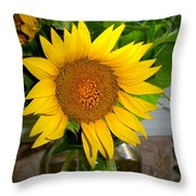 Sunny In Md 4 Throw Pillow