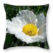 Sunny Side Flower Throw Pillow
