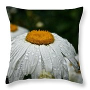 Sunny Sides Up Throw Pillow