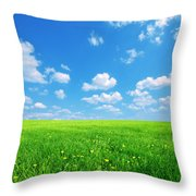Sunny Spring Landscape Throw Pillow