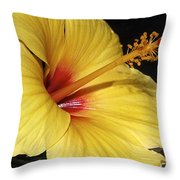 Sunny Yellow Hibiscus Flower Throw Pillow