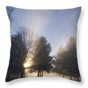 Sunray Through Trees And Fog Throw Pillow