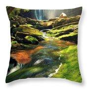Sunrise At Elakala Falls Throw Pillow