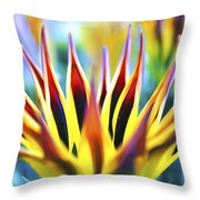 Sunrise Flower Throw Pillow