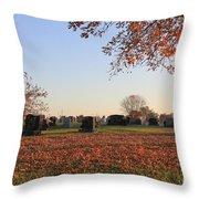 Sunrise In The Graveyard Throw Pillow