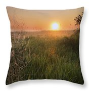 Sunrise On A Dew-covered Cattle Pasture Throw Pillow