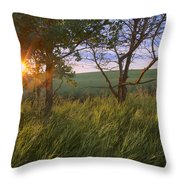 Sunrise On A Farm During The Summer Throw Pillow