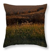 Sunrise On Wild Grasses II Throw Pillow