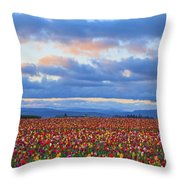 Sunrise Over A Tulip Field At Wooden Throw Pillow