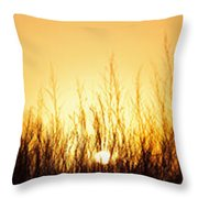 Sunrise Over Nachusa Grasslands Throw Pillow