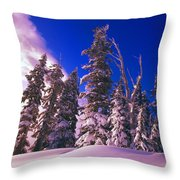 Sunrise Over Snow-covered Pine Trees Throw Pillow
