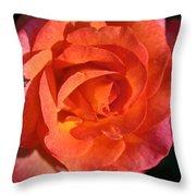 Sunrise Rose Throw Pillow
