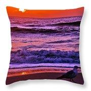 Sunrise Sea And Seagull Throw Pillow
