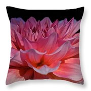Sunrise Shades Of Pink Throw Pillow