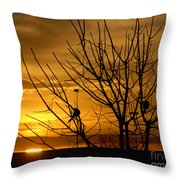 Sunrise Song Throw Pillow