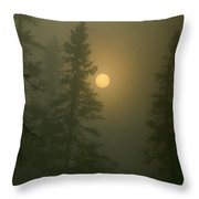 Sunrise Through The Fog 1 Throw Pillow
