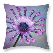 Sunscape Daisy Throw Pillow