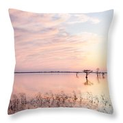 Sunset - Pretty In Pink Throw Pillow