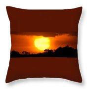 Sunset And Bird Throw Pillow