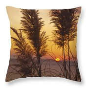 Sunset On The Mediterranean Sea And Plant Throw Pillow