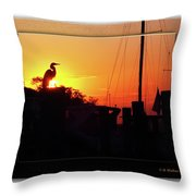 Sunset At The Granary Throw Pillow