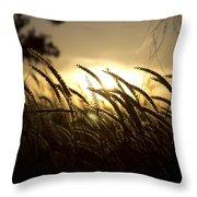 Sunset Behind Tall Grass Throw Pillow