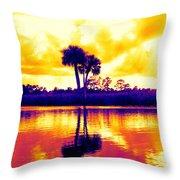 Sunset Colour Throw Pillow