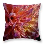 Sunset Dahlia Throw Pillow