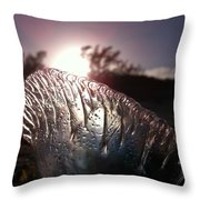 Sunset For Man-o-war Throw Pillow