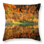 Sunset Glow On The Pond Throw Pillow
