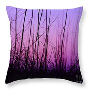 Sunset Grasses Throw Pillow