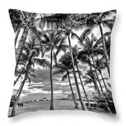 Sunset Grove At Palm Beach Throw Pillow
