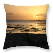 Sunset Monkey Mia Throw Pillow