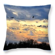 Sunset Of The Hawks Throw Pillow